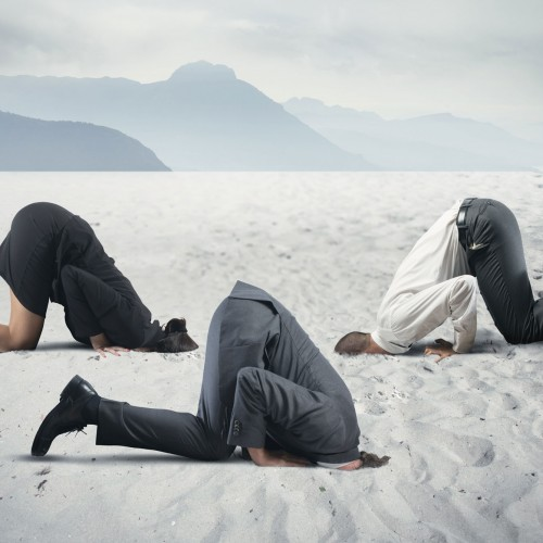Don't bury your head in the sand and use the freelance talent pool